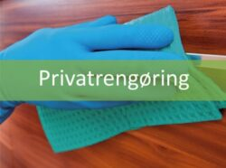 Privatrengøring